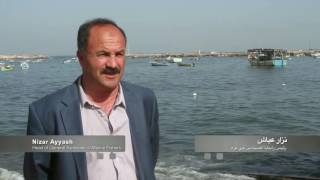 Download Gaza fishers gain new skills and greater hope for future employment Video
