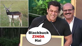 Download Salman Khan's FUNNY Reaction On His Blackbuck/Deer Case At Tiger Zinda Hai Promotions Video