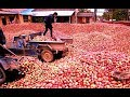 Download How Apple Juice Made in Factory? - Apple juice production from Apple Video
