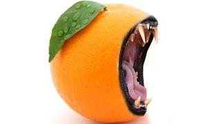 Download Fruit Monster-Fruit Blending and Manipulation using Photoshop By Nagu's Handwork Video
