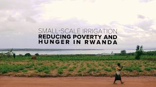 Download Small - Scale Irrigation - Reducing poverty and Hunger in Rwanda Video
