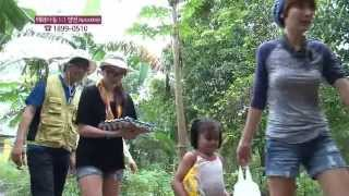 Download 다큐-해외아동 구호 프로젝트 '쓰레기더미에서 부는 희망의바람' Video