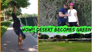 Download Green Dubai | Pond Park | 2016 Video