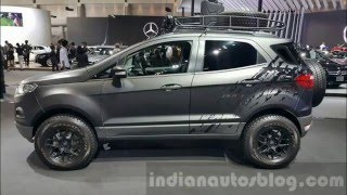 Download Ford EcoSport Custom Modifications Video