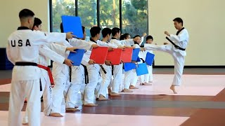 Download Amazing Taekwondo Training Video