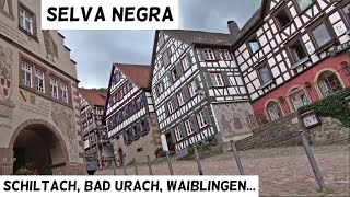Download Pueblos más bonitos de Selva Negra: Schiltach, Bad Urach y Waiblingen | Selva Negra 10# | Alemania Video