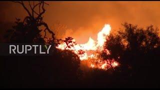 Download Israel: Firefighters battle Haifa blaze as over 50,000 flee wildfires Video