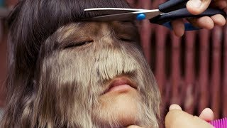 Download THE HAIRIEST GIRL IN THE WORLD. SHE SHAVED FOR A WEDDING - LOOK HOW SHE LOOKS LIKE! Video
