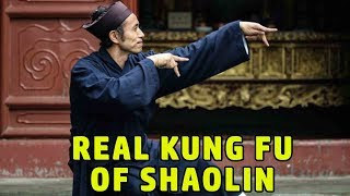 Download Wu Tang Collection - Real Kung Fu of Shaolin Video
