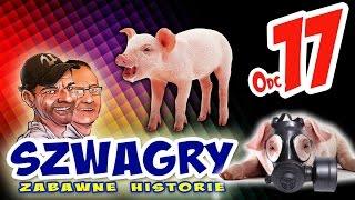 Download Szwagry - Odcinek 17 Video
