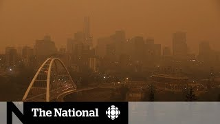 Download State of emergency for B.C. wildfires Video