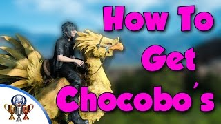 Download Final Fantasy XV - How to Get and Ride Chocobo's - Races and Traveling - Chocobo Jockey Video