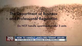 Download How to handle landlord-tenant issues Video