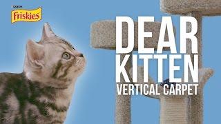 Download Dear Kitten: The Vertical Carpet Video