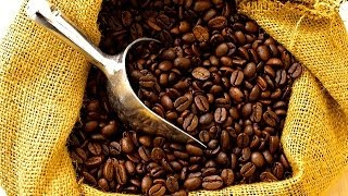 Download COFFEE PRODUCTION - FIJI COFFEE Video