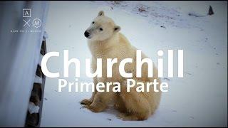 Download La capital de los osos polares! P1 Alan por el mundo Video