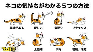 Download 【衝撃】ネコの気持ちがよくわかる5つの方法 Video