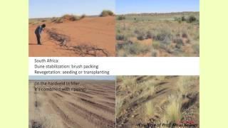 Download Evaluation of afforestation interventions on shallow Mediterranean soils Video