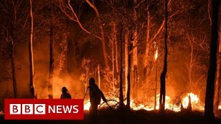 Download Australia fires: Rain brings relief but huge blazes expected - BBC News Video