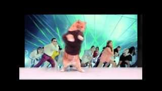 Download Catnam Style! Video