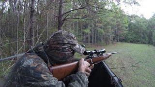 Download North Florida deer hunt Video