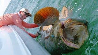 Download Balloon Fishing Challenge - 4K Video