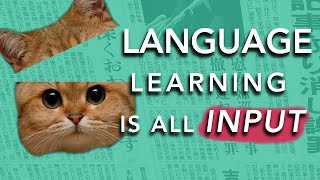 Download How to Learn a Language: INPUT (Why most methods don't work) Video