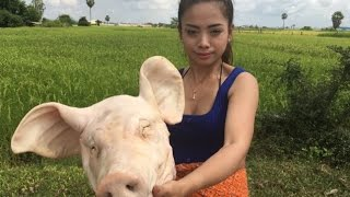 Download village food factory   pig head cook   traditional food in cambodia (9) Video