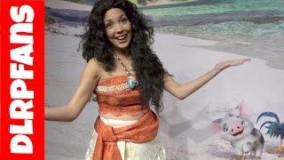 Download Moana / Vaiana at Disneyland Paris Video