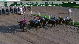 Download HIPODROMO ARGENTINO DE PALERMO VIVO 4 Video