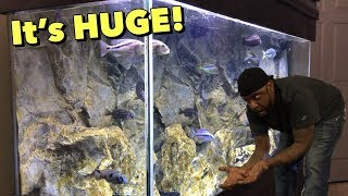Download THE BIG AQUARIUM, Everyone wants to see me FEED THESE FISH! Video