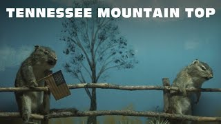 Download Kid Rock - Tennessee Mountain Top [Lyrics] Video