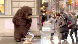 Download Bear in NYC Prank! Video