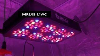 Download Last HygroHybrid LED Update Video