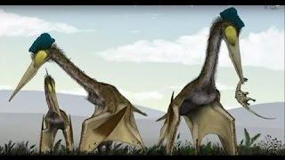 Download THE EVOLUTION OF FLIGHT - NOVA DOCUMENTARY - History Discovery Life (full length documentary) Video