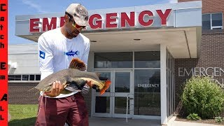 Download DOCTOR Saves PET FISH Brought into HOSPITAL! Video