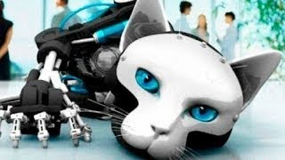 Download 10 COOLEST ROBOT ANIMALS Video