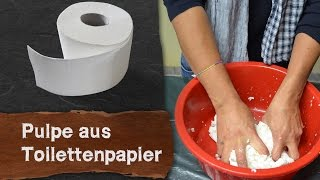 Download Pulpe (Pappmaché) aus Toilettenpapier selber machen Video