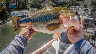 Download How To Catch GIANT Bass **Day on the Water** Video