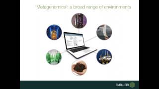 Download EBI Metagenomics: analysing and exploring metagenomics data Video