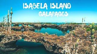 Download Visiting Isabela Island, Galapagos Islands, Ecuador Video