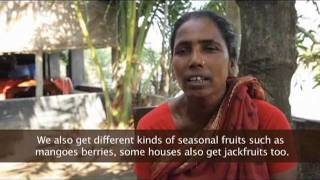 Download Murky Waters: Shrimp Farming in Bangladesh Video
