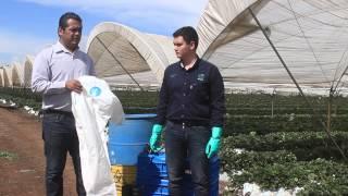 Download Comité Estatal de Sanidad Vegetal de Michoacán (CESAVEMICH)- INOCUIDAD AGRÍCOLA Video