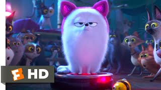 Download The Secret Life of Pets 2 - Dog vs. Cats Scene (5/10) | Movieclips Video