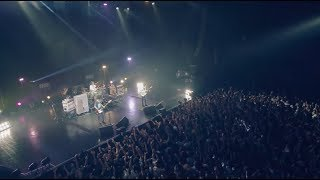 Download UNISON SQUARE GARDEN「シュガーソングとビターステップ」LIVE MUSIC VIDEO Video