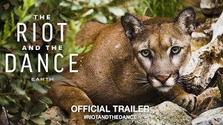 Download The Riot And The Dance: Earth (2018) | Official Trailer HD Video