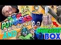 Download Disney's PJ MASKS Craft Kit & FGTEEV (FUNnel Vision) MYSTERY BOX 🎁 unboxing Gekko Cat boy Skit 🙀 Video