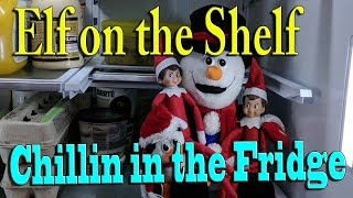 Download Elf on the Shelf - Just Chillin in the Fridge Video