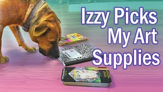 Download I Let My Dog Pick Out My Art Supplies (& I draw her cause she deserves it) Video