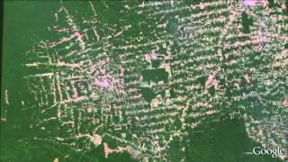 Download Amazon deforestation animation in Google Earth Video